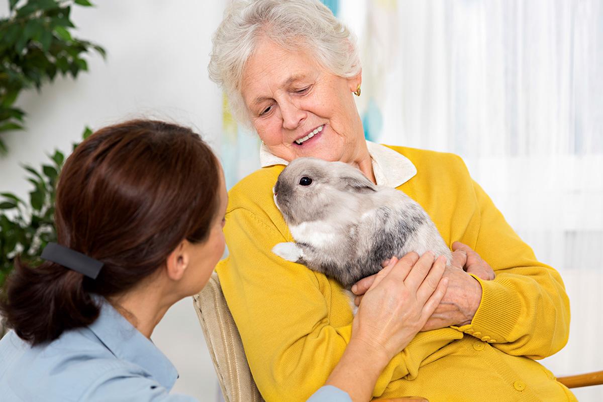 Zuverlässigkeit: Ausbildung zu Senioren Assistenten und Berufsbetreuern der HELP Akademie
